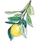 精油 オレンジ