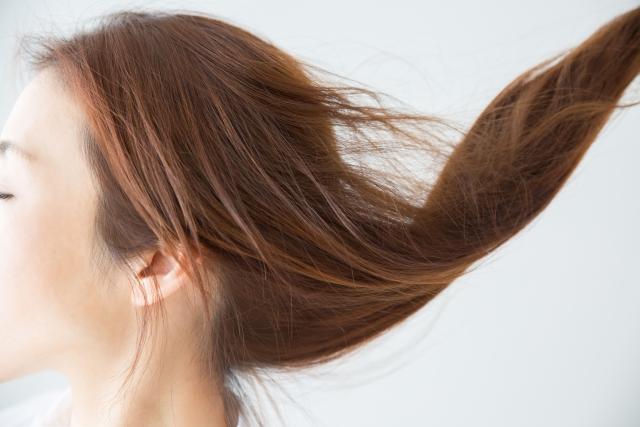 髪の美しさは頭皮から~10月20日は頭髪の日~